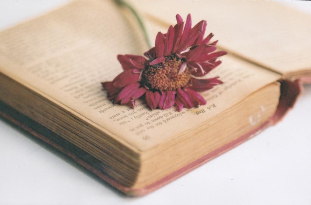 romantikus regény_1