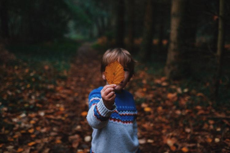 Az autizmus bűvkörében – Ismerd meg az autizmust és a vele élőket!