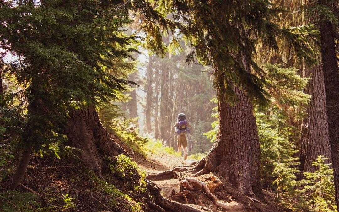 """""""A természetben töltött időt receptre kellene felírni"""" – Ezért érdemes a szabadban lenni, amikor csak lehet"""